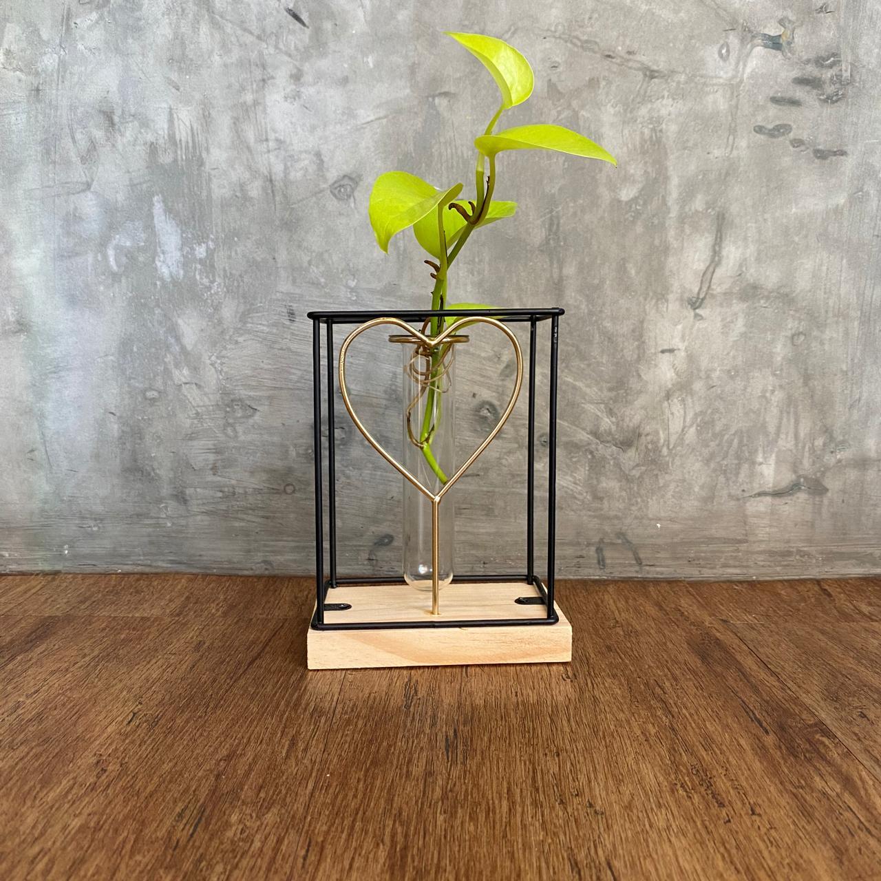vaso romantic